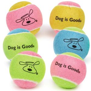 Dog is Good Tennis Balls